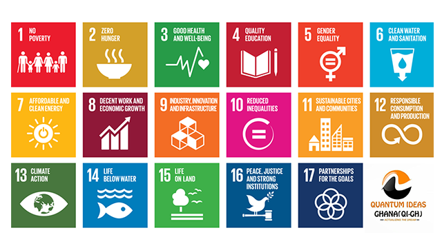 First Four Years of SDG Implementation