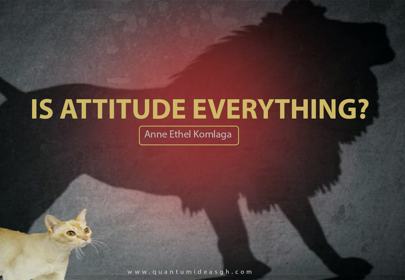 IS ATTITUDE EVERYTHING?